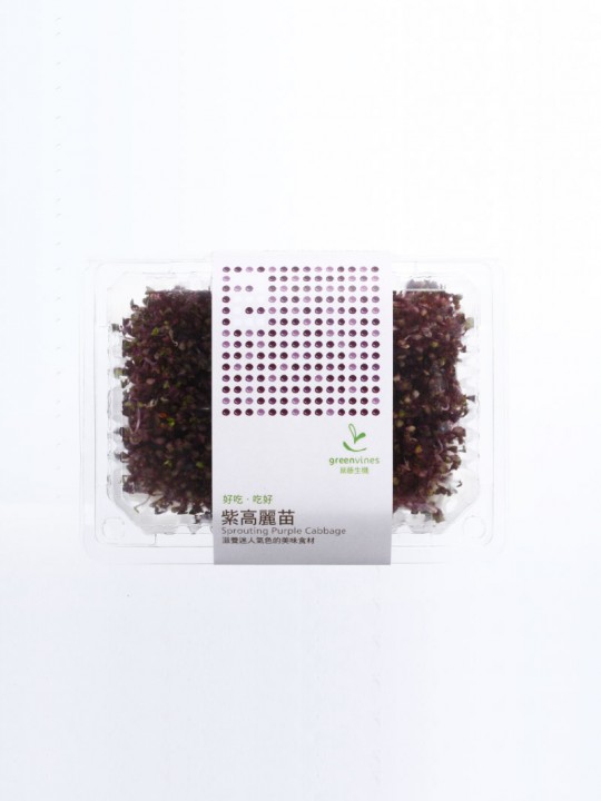 有機紫高麗苗