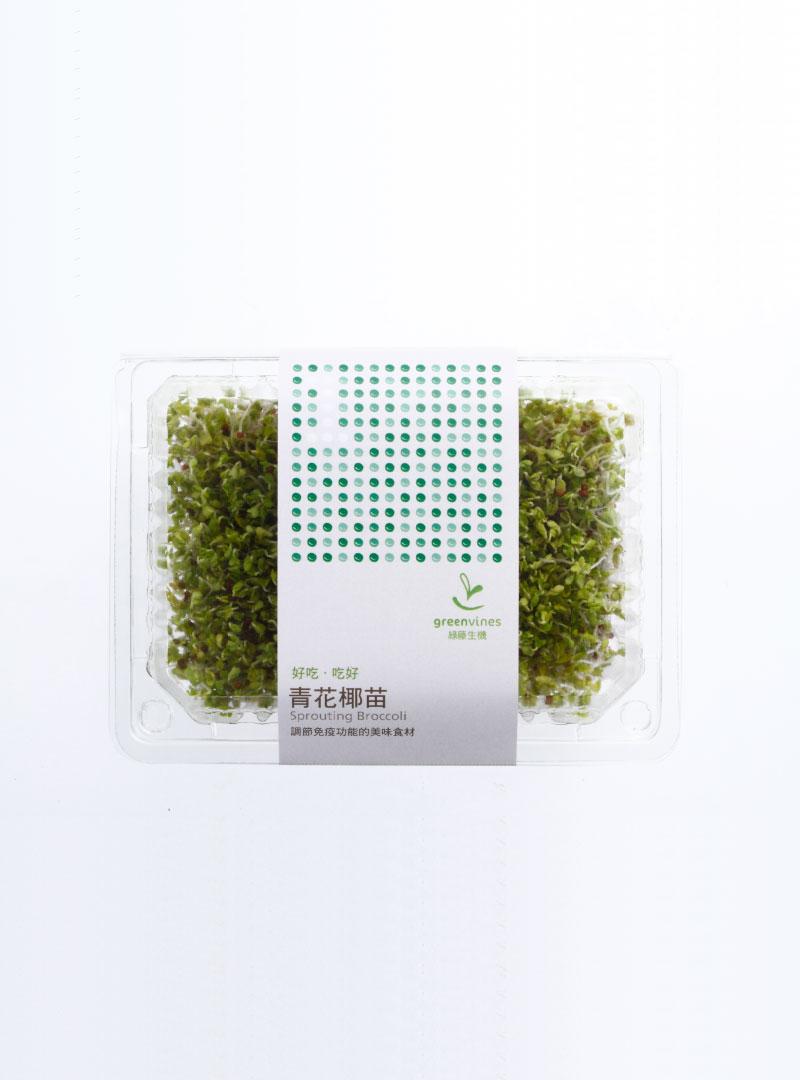 有機青花椰苗