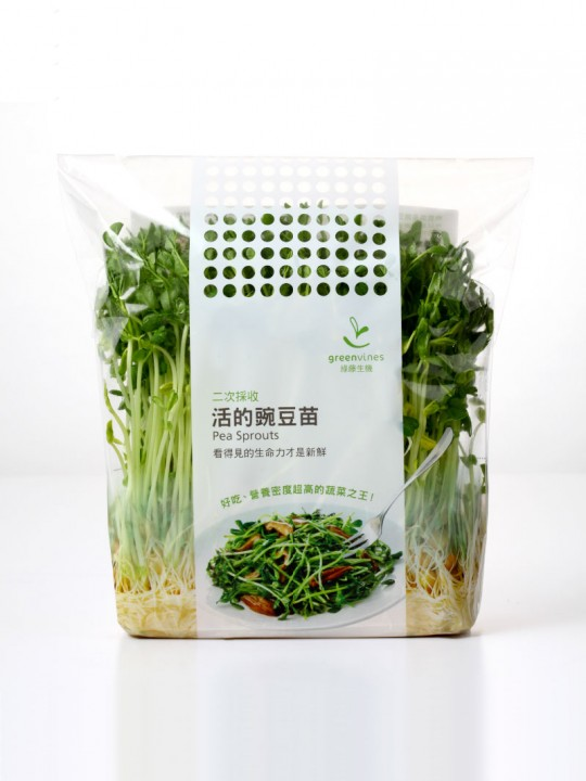 二次採收-有機-活的豌豆苗