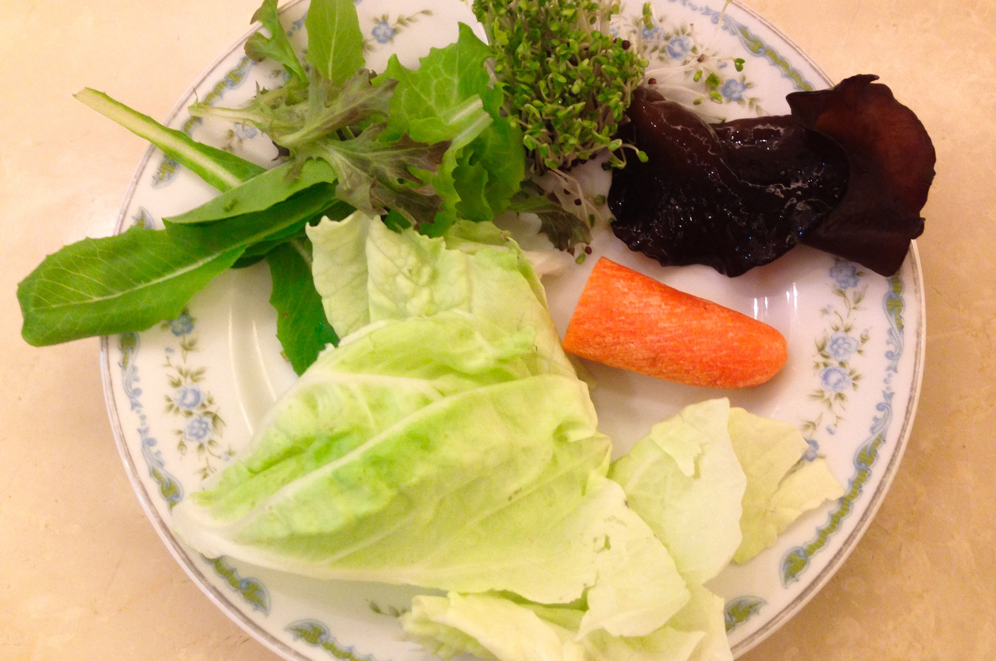 副食品食材